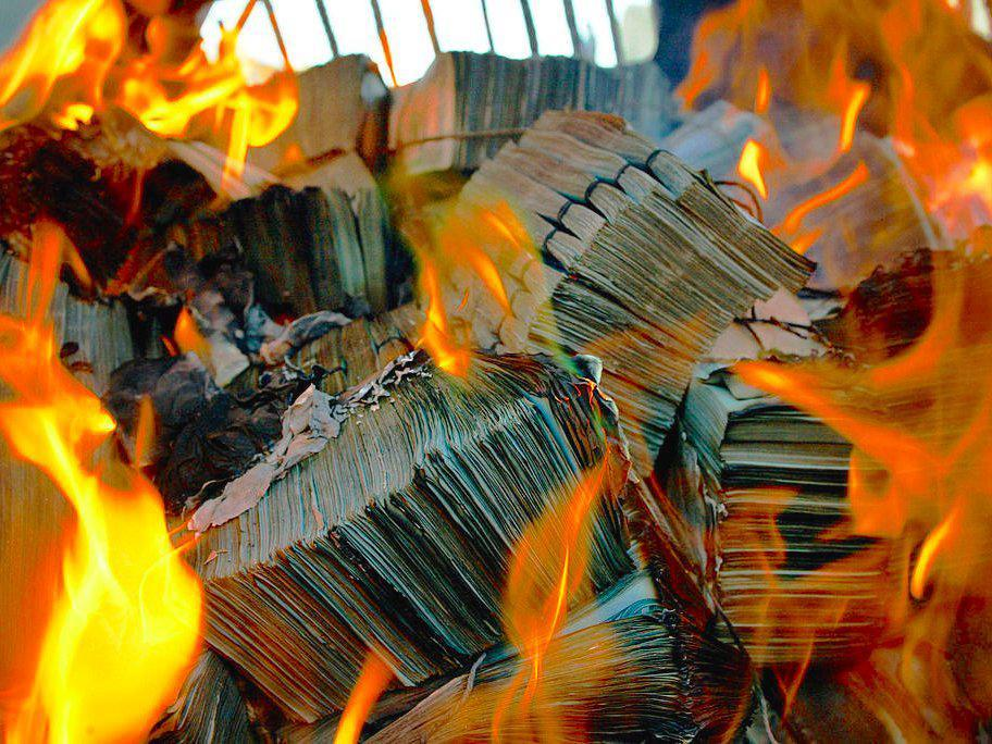 stock-flames money dollars