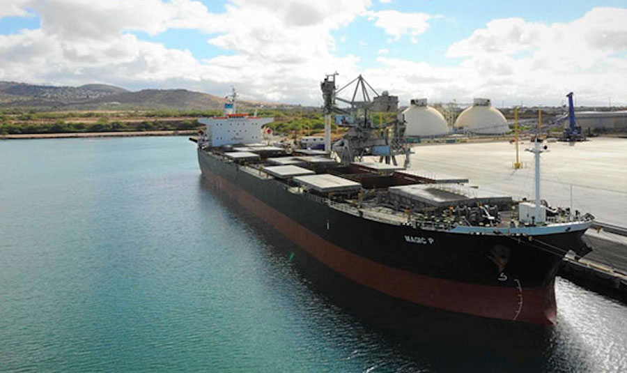 Π. Παναγιωτίδης: Μπαράζ ναυλώσεων στην αγορά ξηρού φορτίου από την Castor Maritime