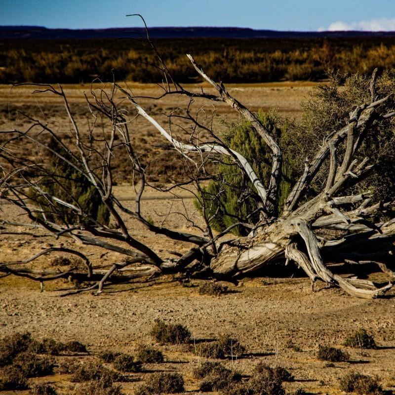 Κλιματική αλλαγή: Μέχρι το τέλος του αιώνα, η ξηρασία θα πλήττει διπλάσιο αριθμό ανθρώπων