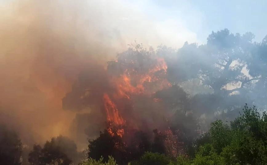 Εύβοια: Σε κατάσταση έκτακτης ανάγκης η Δημοτική Ενότητα Ελυμνίων