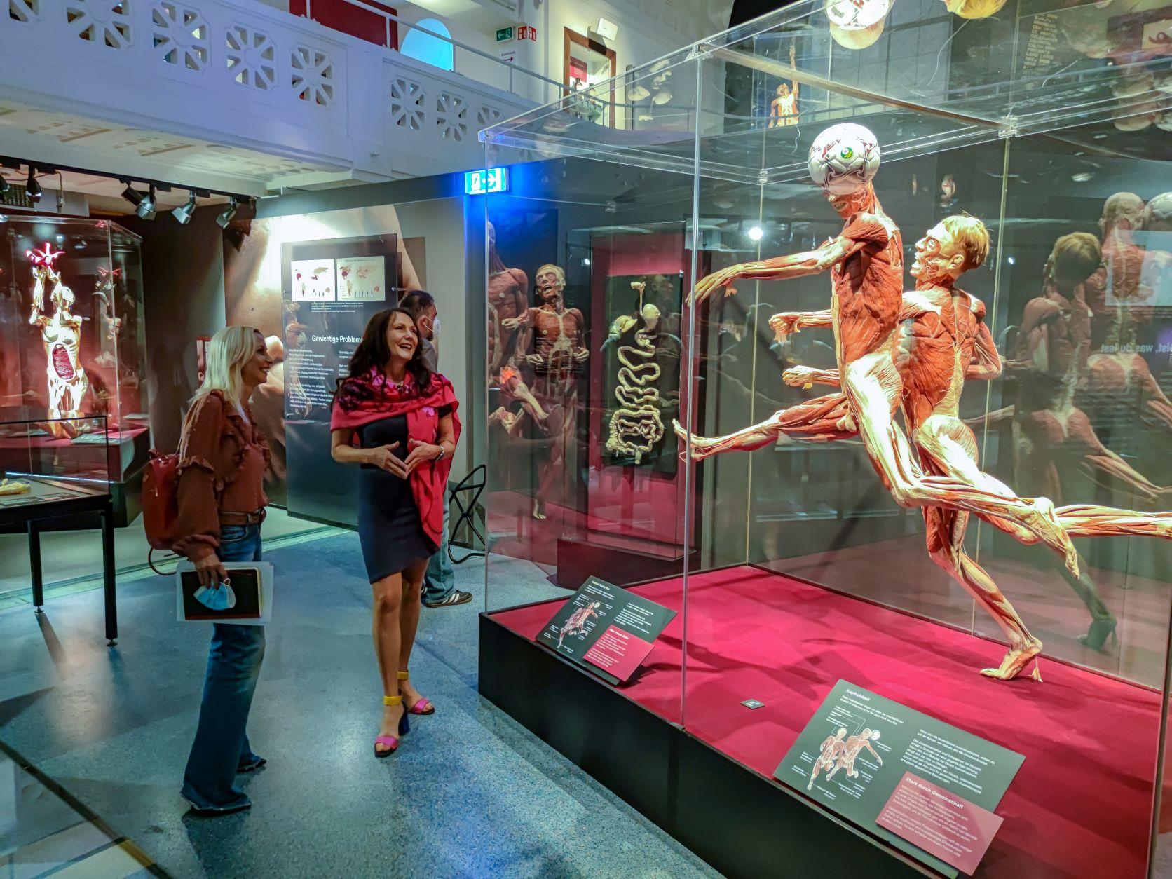 Body Worlds: Ένα ταξίδι στο ανθρώπινο σώμα - Έκθεση στον Ελληνικό Κόσμο